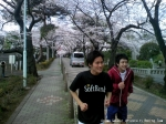 桜の木の下走る走る